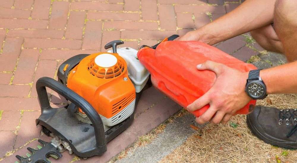 What Type of Oil to Use on Your Hedge Trimmer? - The Daily