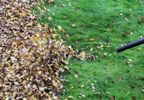 CFM vs. MPH: Which is Important for a Leaf Blower?