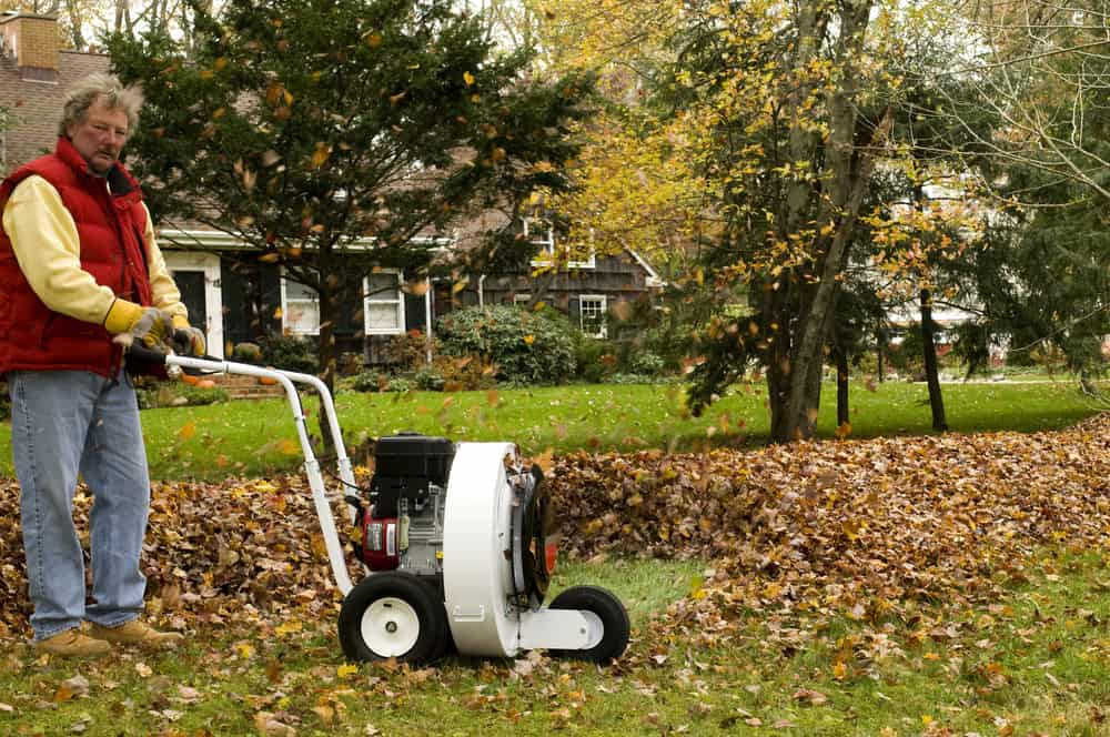best Self Propelled leaf blower