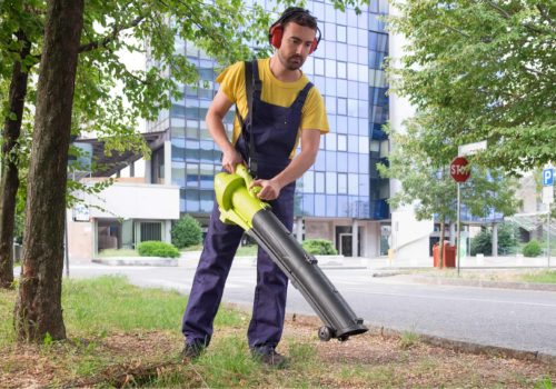 7 Best Battery Powered Leaf Blowers of 2019 – Lithium-ion Cordless Leaf Blower Reviews