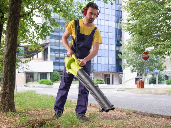 7 Best Cordless Leaf Blowers of 2021 – Battery Powered Leaf Blower Reviews