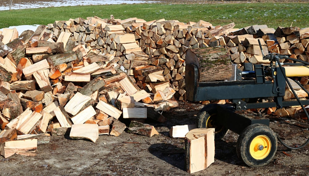 best gas powered log splitter