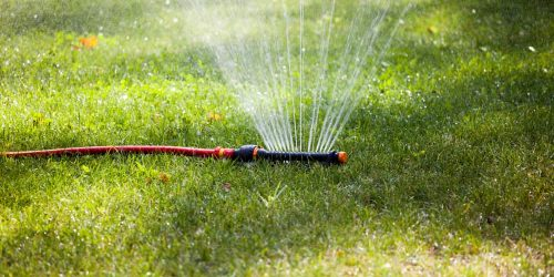 7 Best Lawn Sprinkler Reviews – Top Sprinkler for Garden 2019