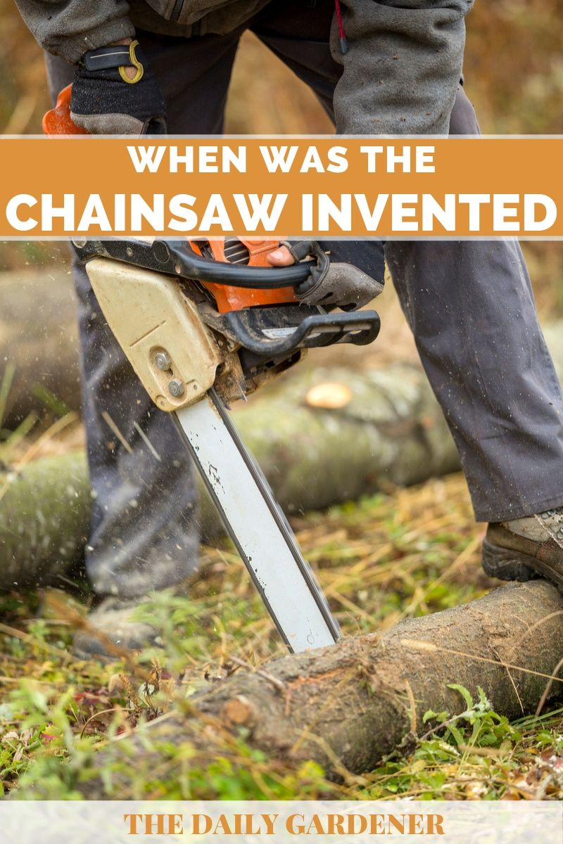chainsaw history 4