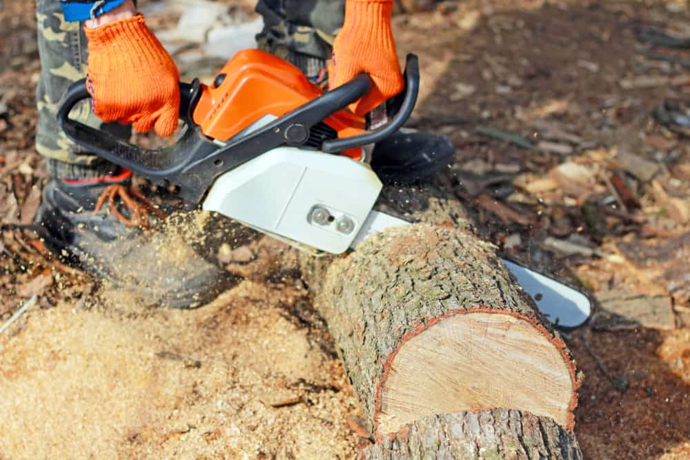how to buy best battery powered chainsaw.jpg
