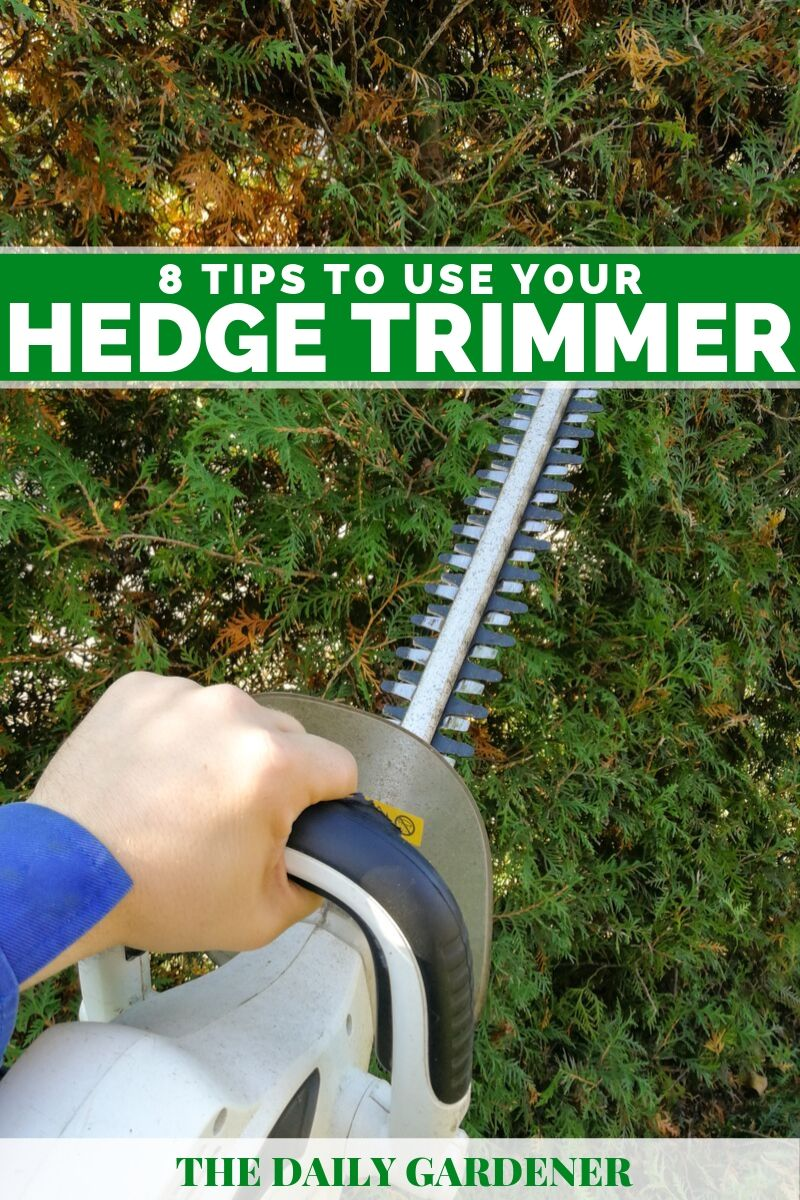 how to use hedge trimmer 2