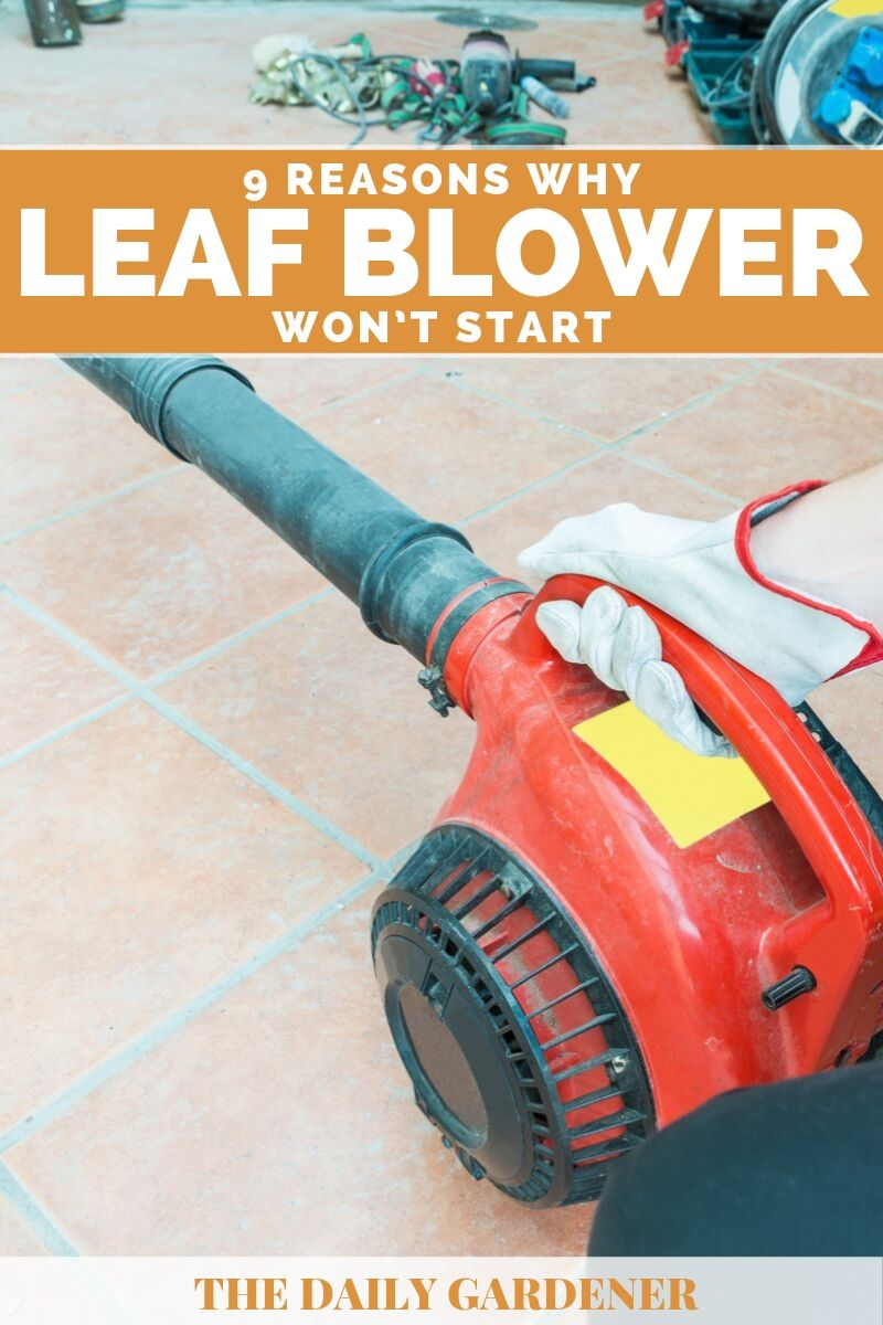 why leaf blower wont start 1