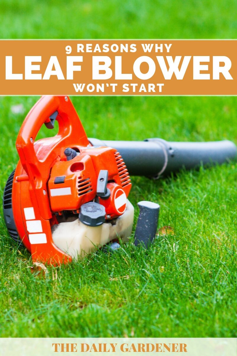 why leaf blower wont start 2