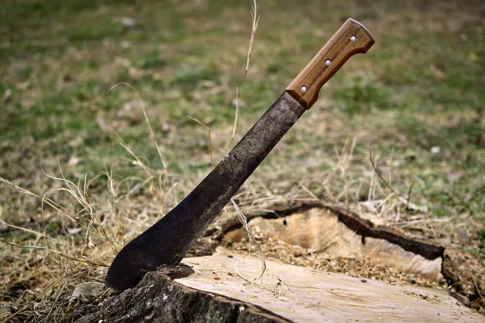 Best Machete buying guide
