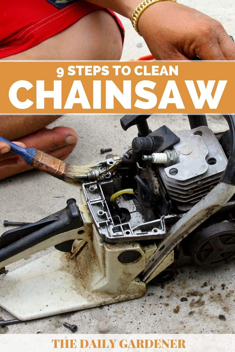 Clean a Chainsaw 3