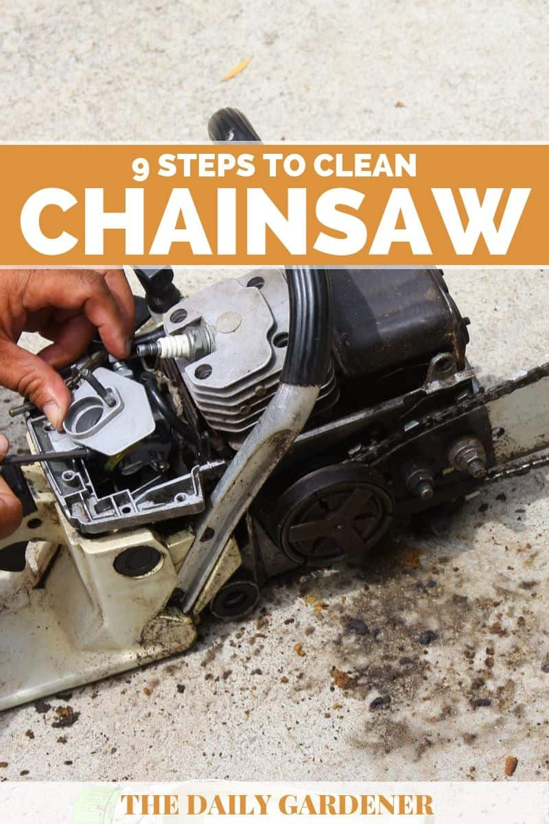Clean a Chainsaw 4