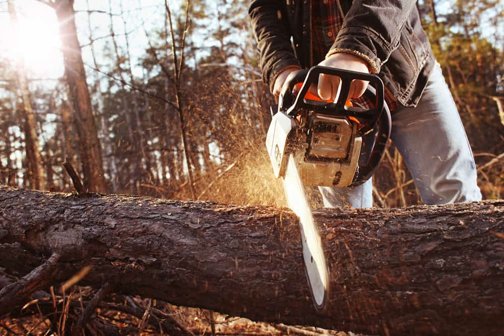 Diameter of wood you need to cut