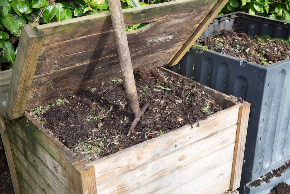 Fertilizing 1
