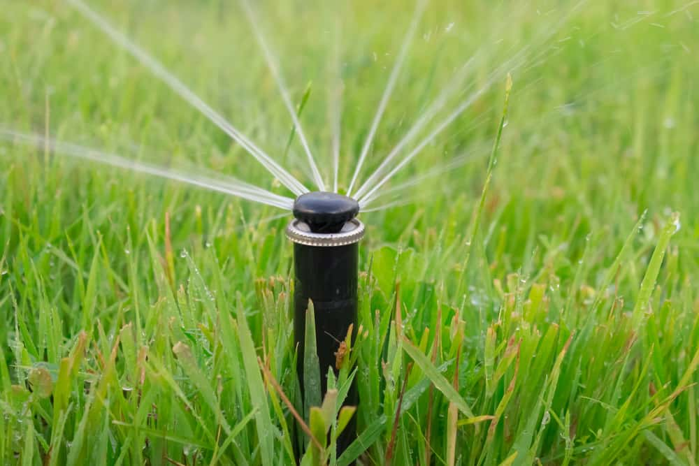 Fixed pop-up sprinkler heads