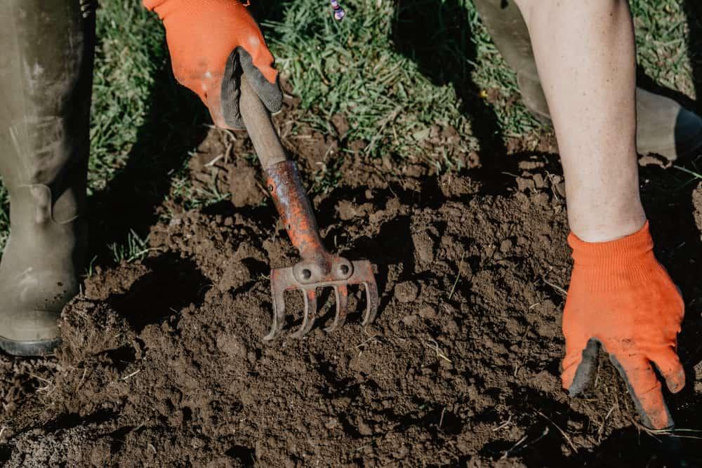 The soil preparation