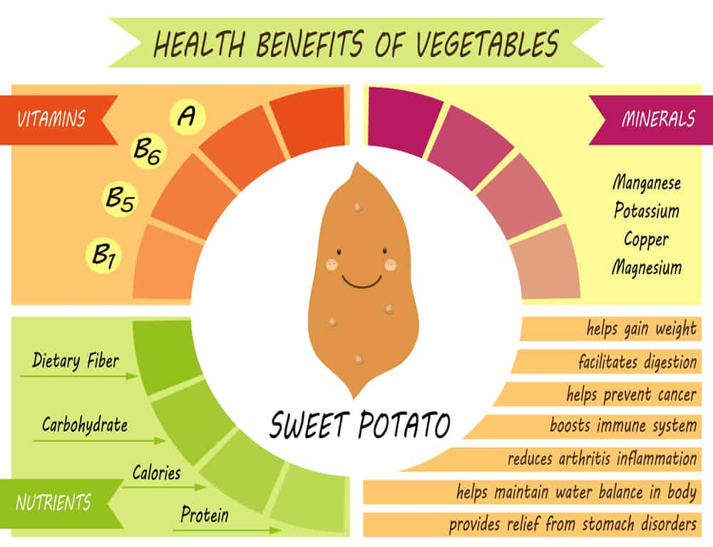 Why You Should Grow Sweet Potatoes