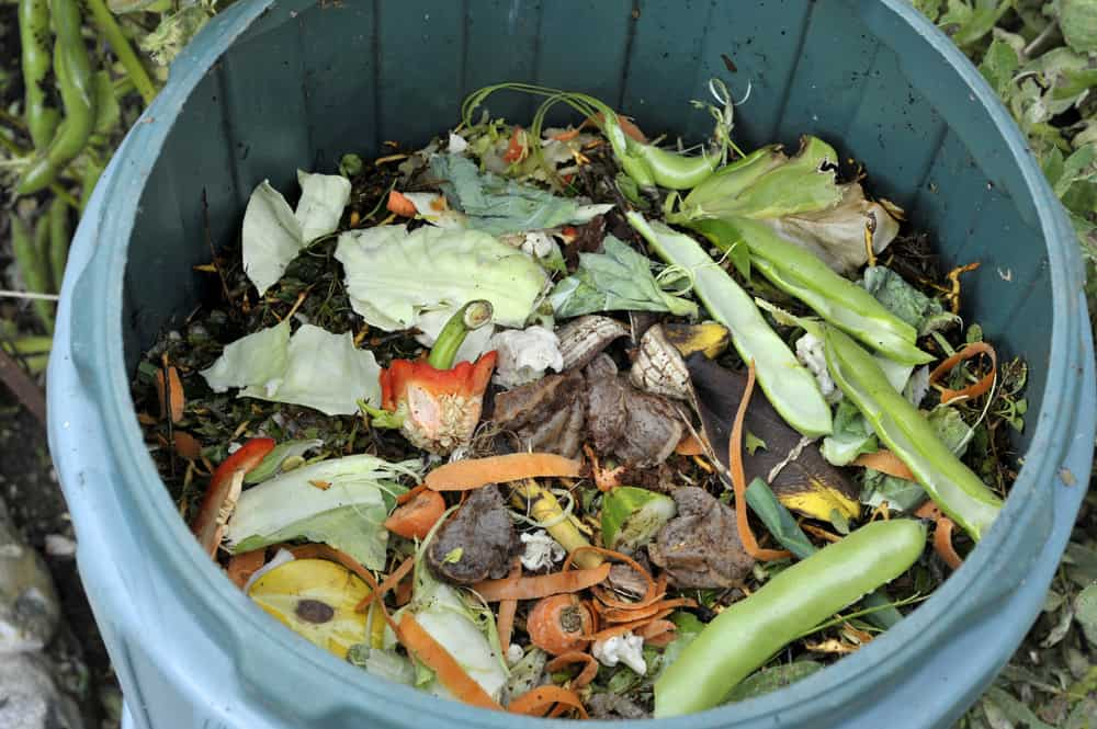 compost bin Durability