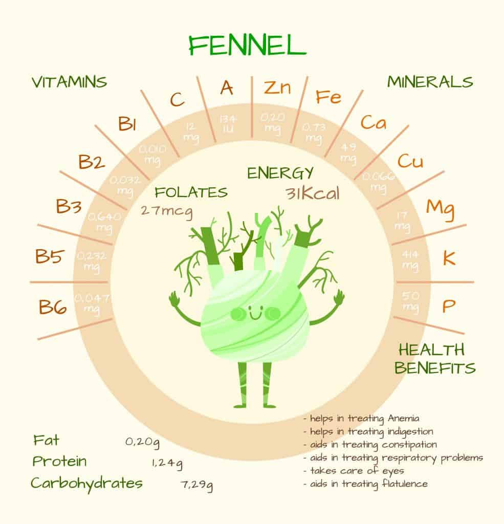 Benefits of Fennel and Fennel Seeds
