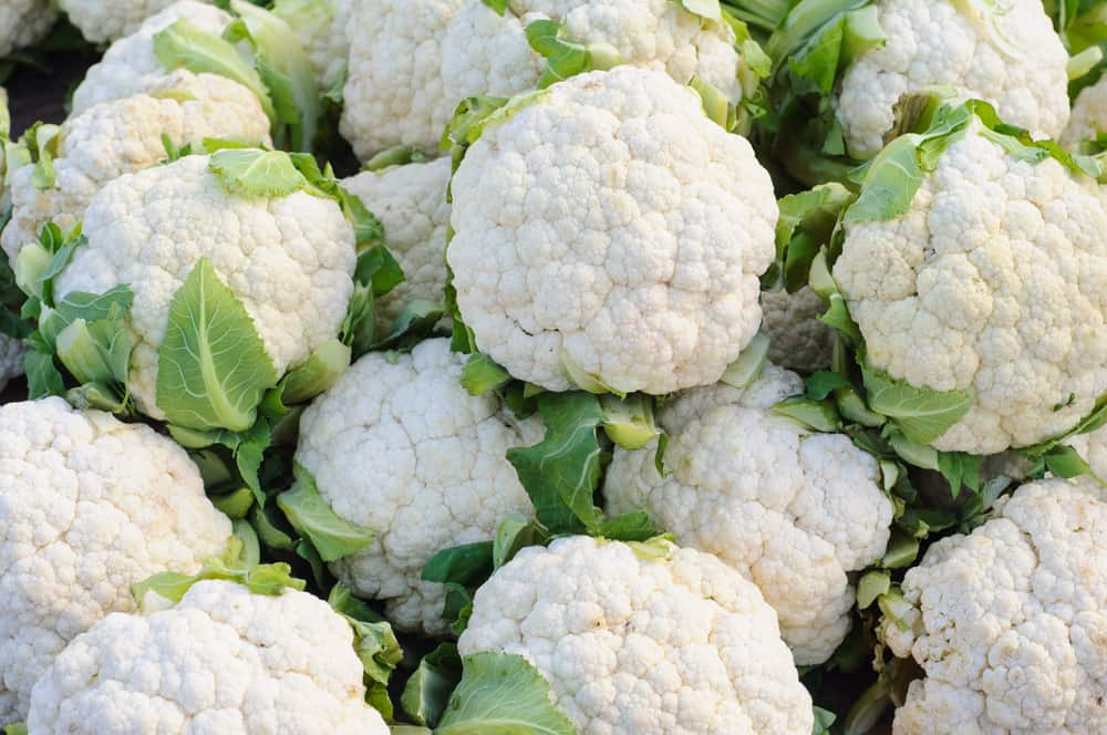 How to Store Cauliflower
