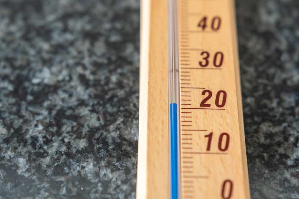 Rhubarb Temperatures