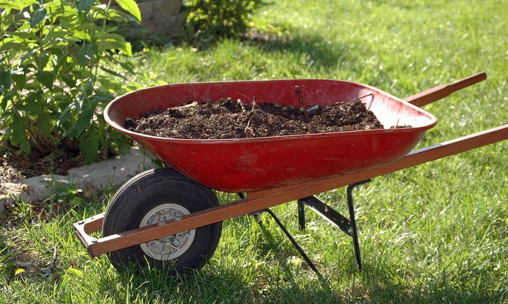 Wheelbarrow Load-Carrying Capacity