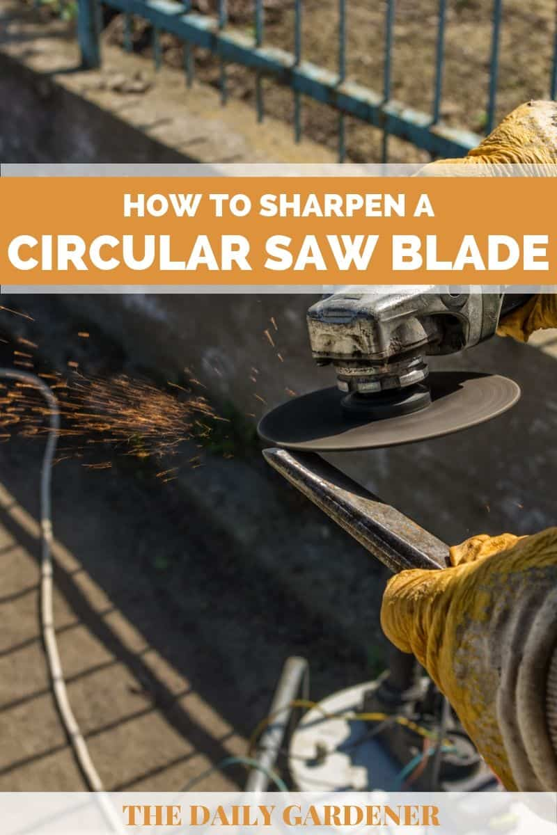 sharpen- circular saw blade 3