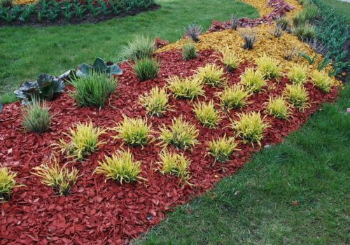 17 Types of Mulch – Which One is Best for You?