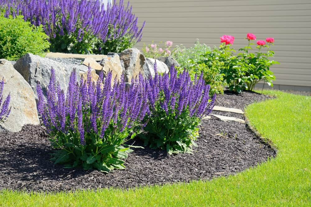 Choose the Best Type of Mulch for Your Yard