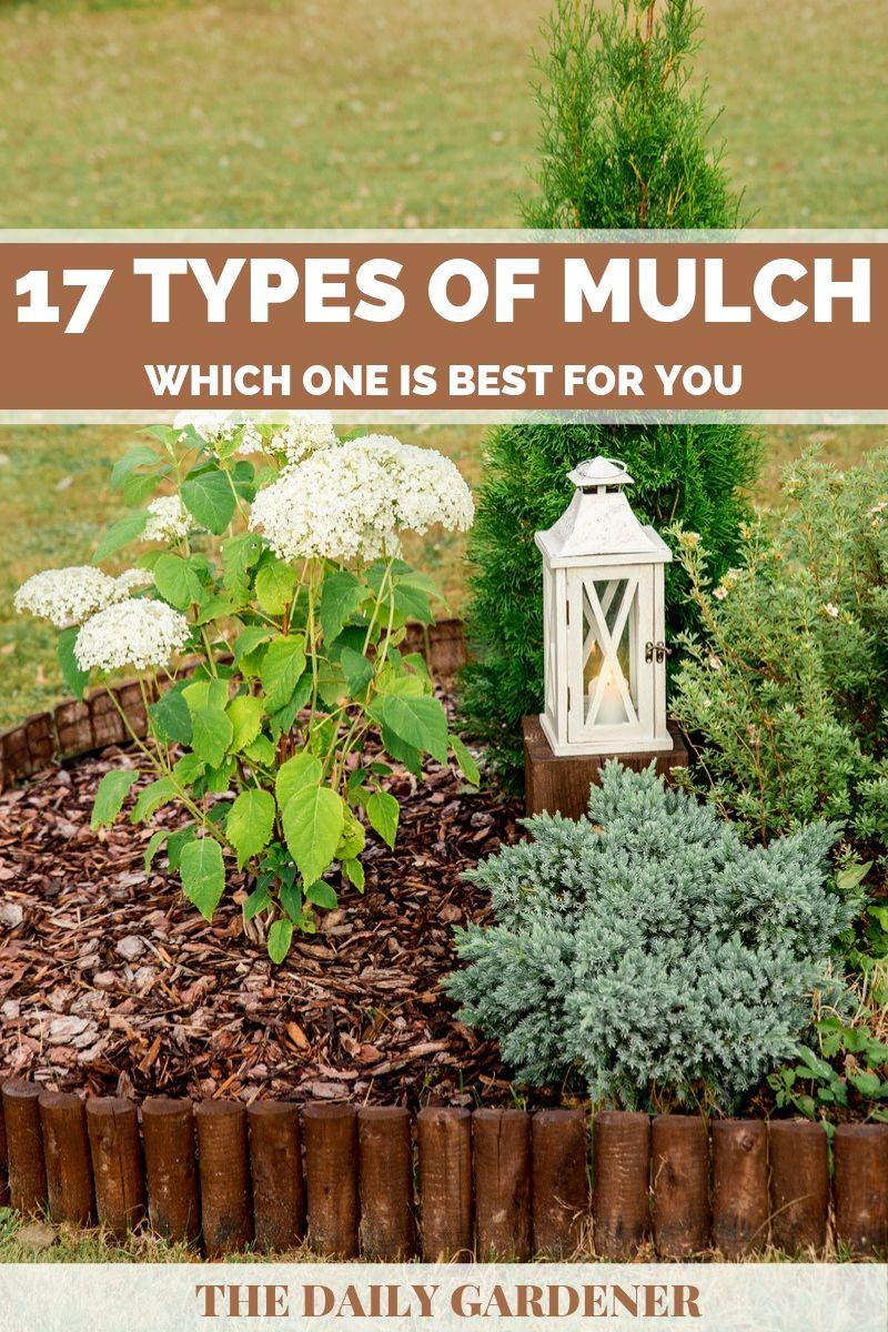 17 Types Of Mulch Which One Is Best For You The Daily Gardener