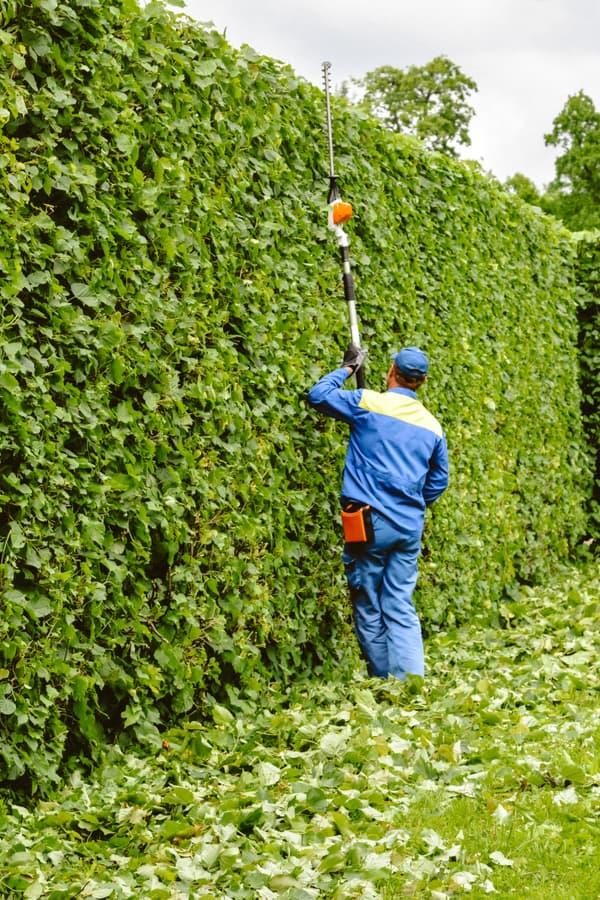 General pruning