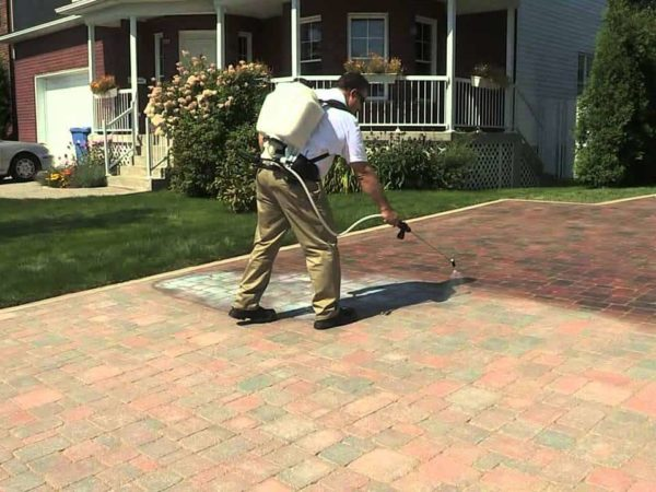 7 Best Paver Sealers of 2021 – Reviews & Buyer's Guide