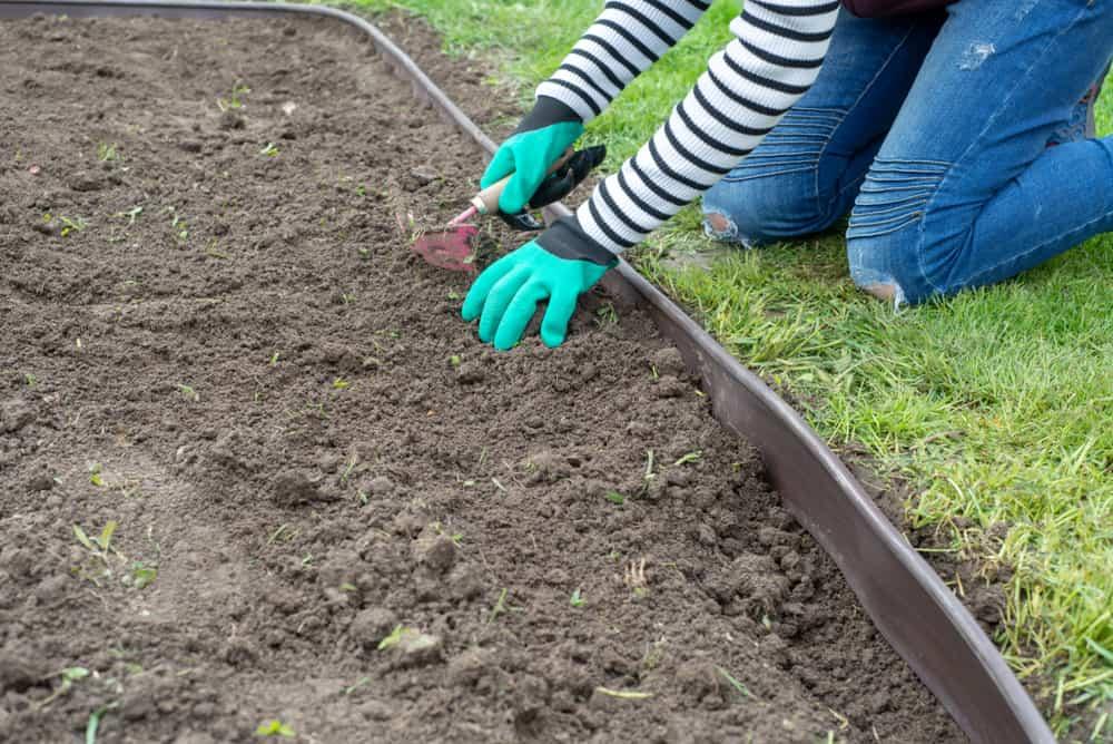 Yard Landscape Edging