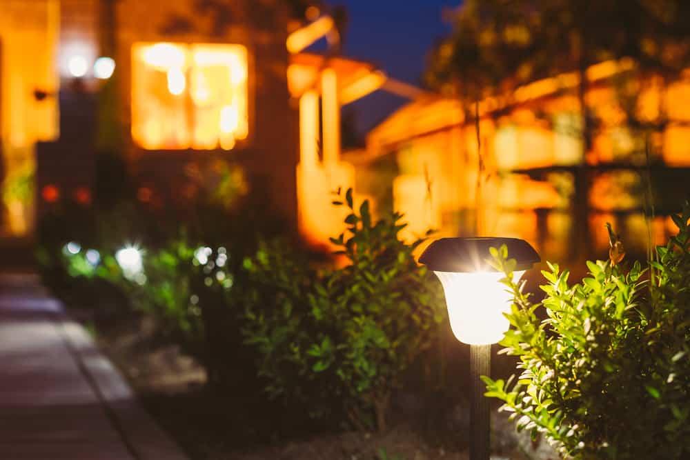 Yard Solar Lights