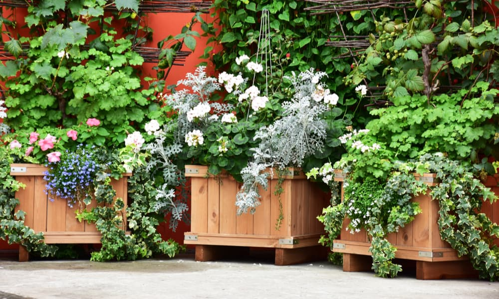 21 Planter Box DIY Ideas You Can Try Today
