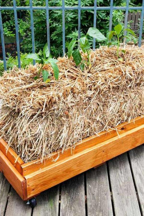 Straw bale Planter Box
