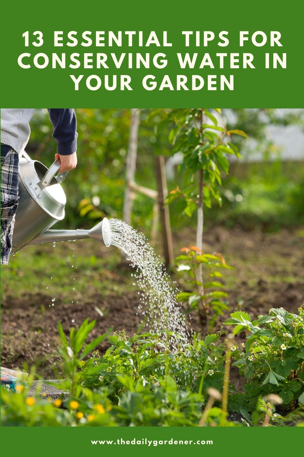 13 Essential Tips for Conserving Water In Your Garden 2