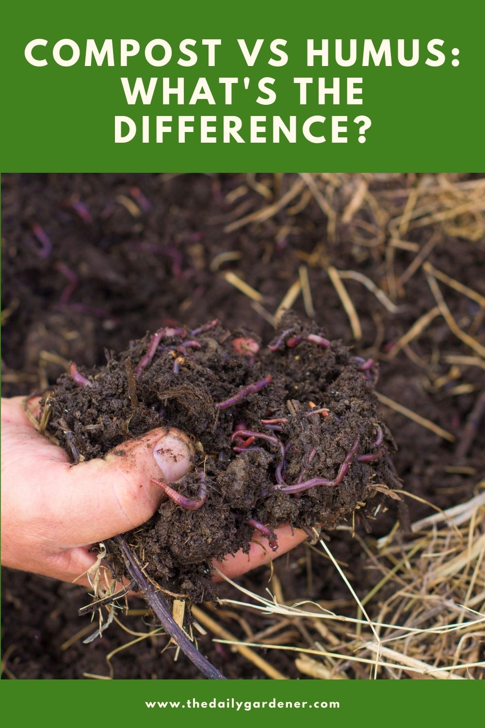 Compost VS Humus What's the Difference 1