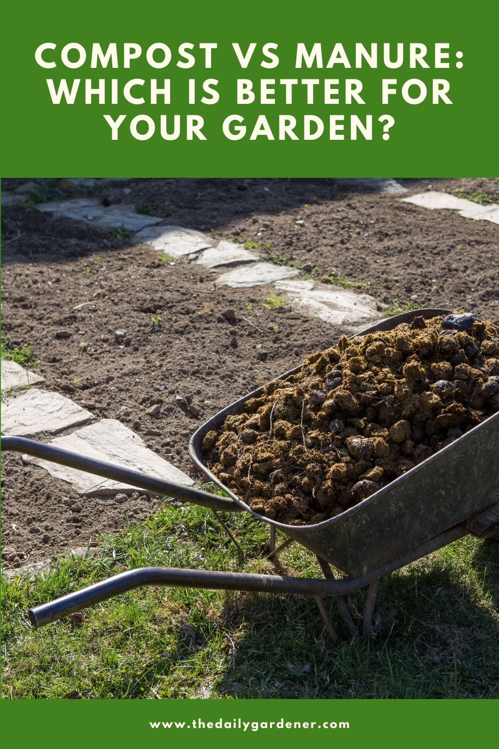 Compost vs manure Which is better for your garden 1
