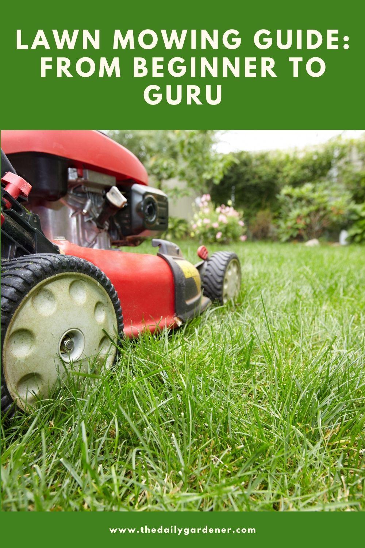 Lawn Mowing Guide From Beginner to Guru 2