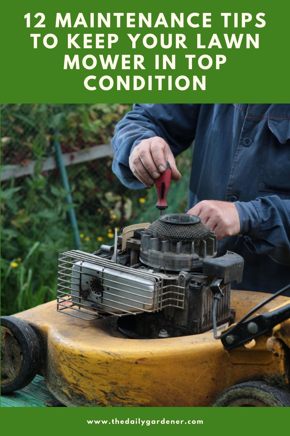 12 Maintenance Tips to keep Your Lawn Mower in Top Condition 2
