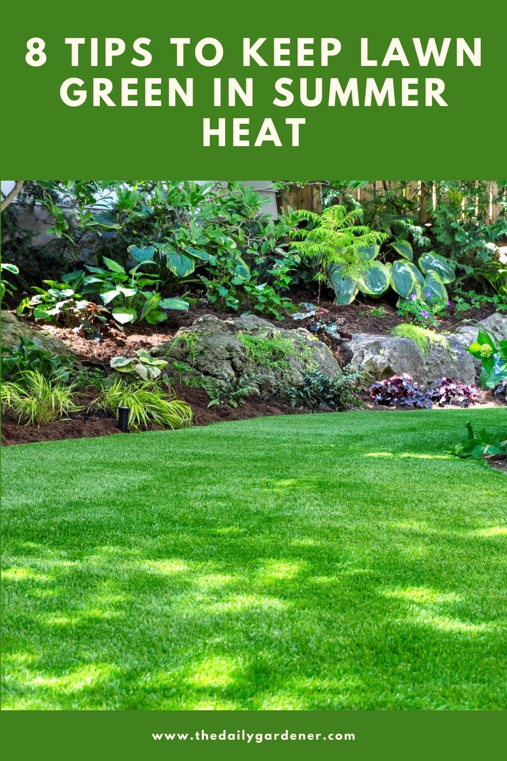 8 Tips to Keep Lawn Green in Summer Heat 2