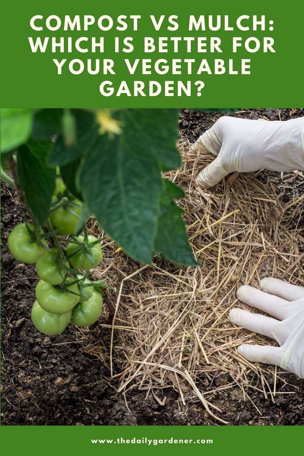 Compost vs Mulch Which is better for your vegetable garden 1