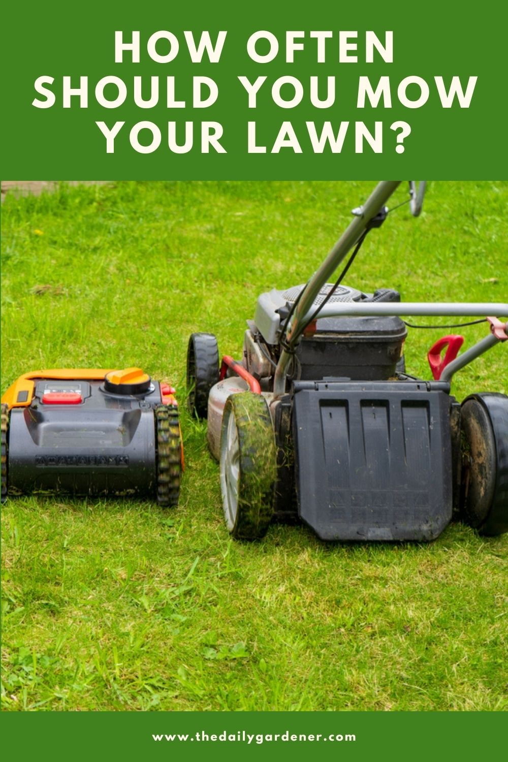 How Often Should You Mow Your Lawn 2