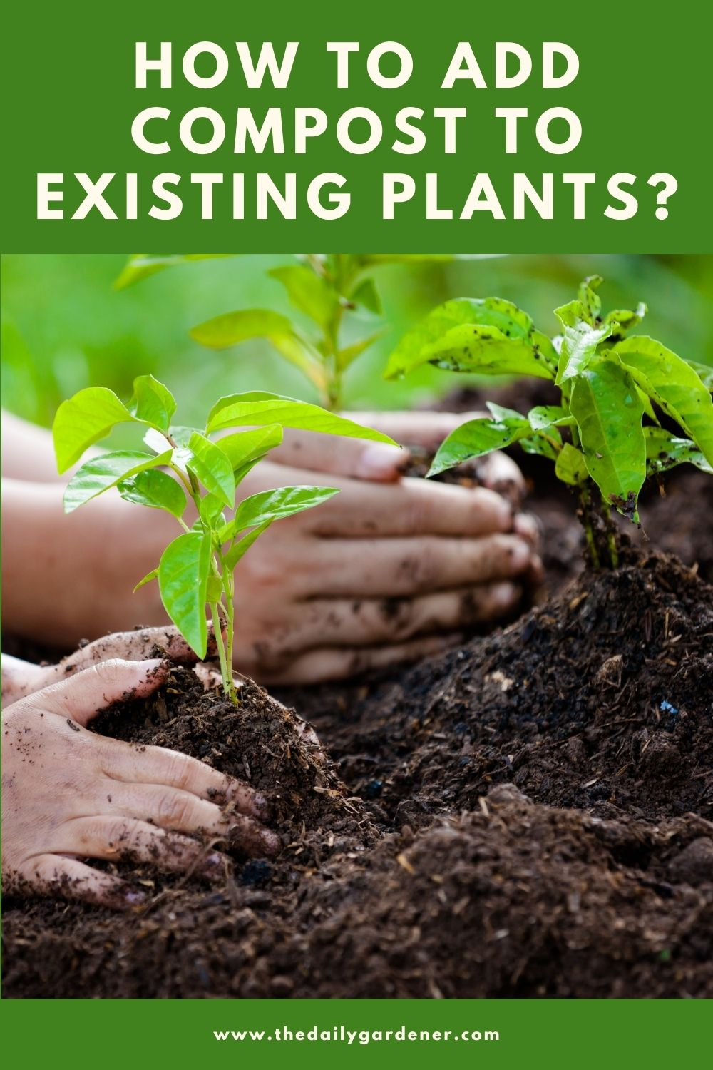 How to Add Compost to Existing Plants 1