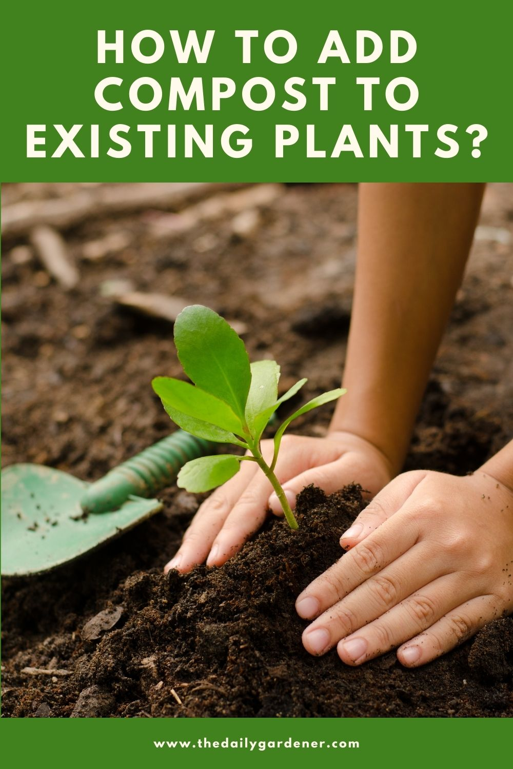 How to Add Compost to Existing Plants 2
