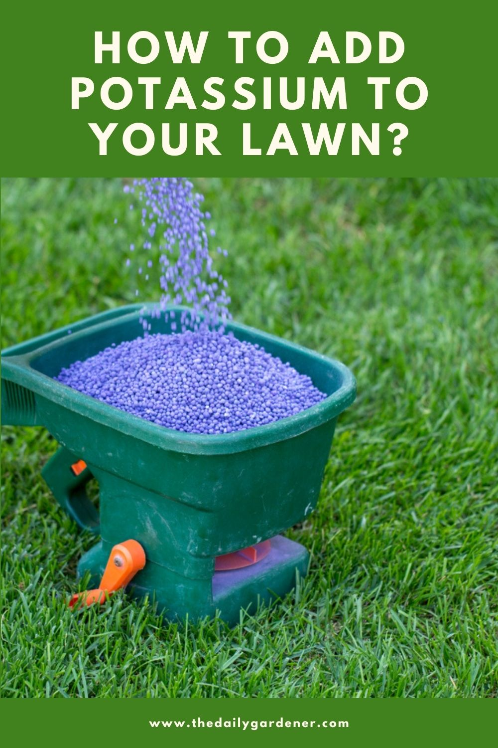 How to Add Potassium to Your Lawn 1