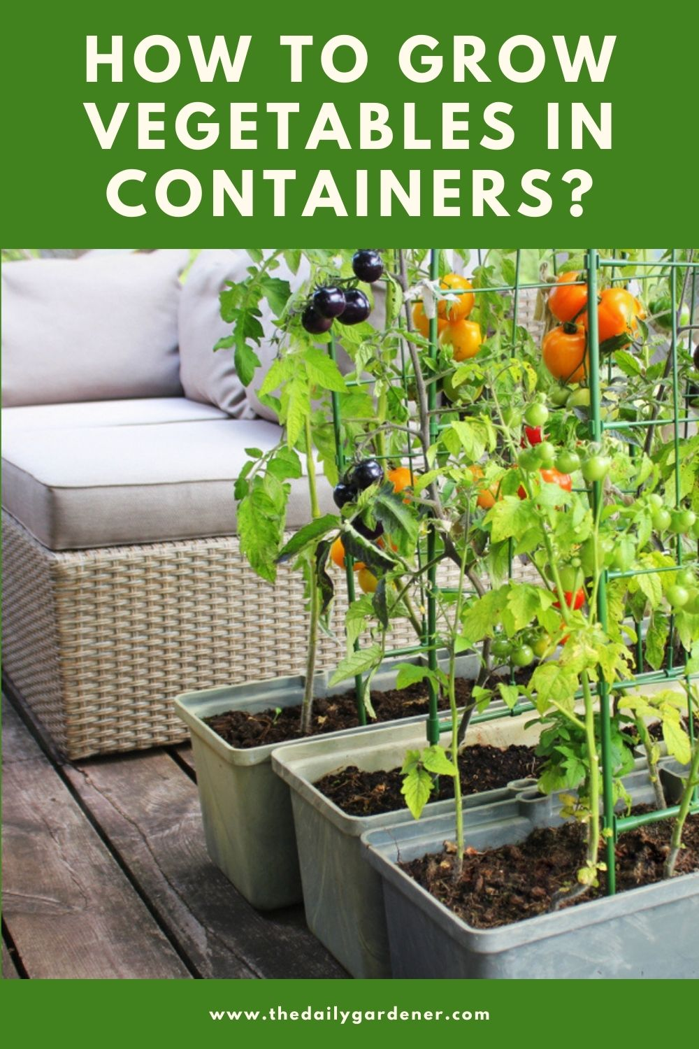 How to Grow Vegetables in Containers 2