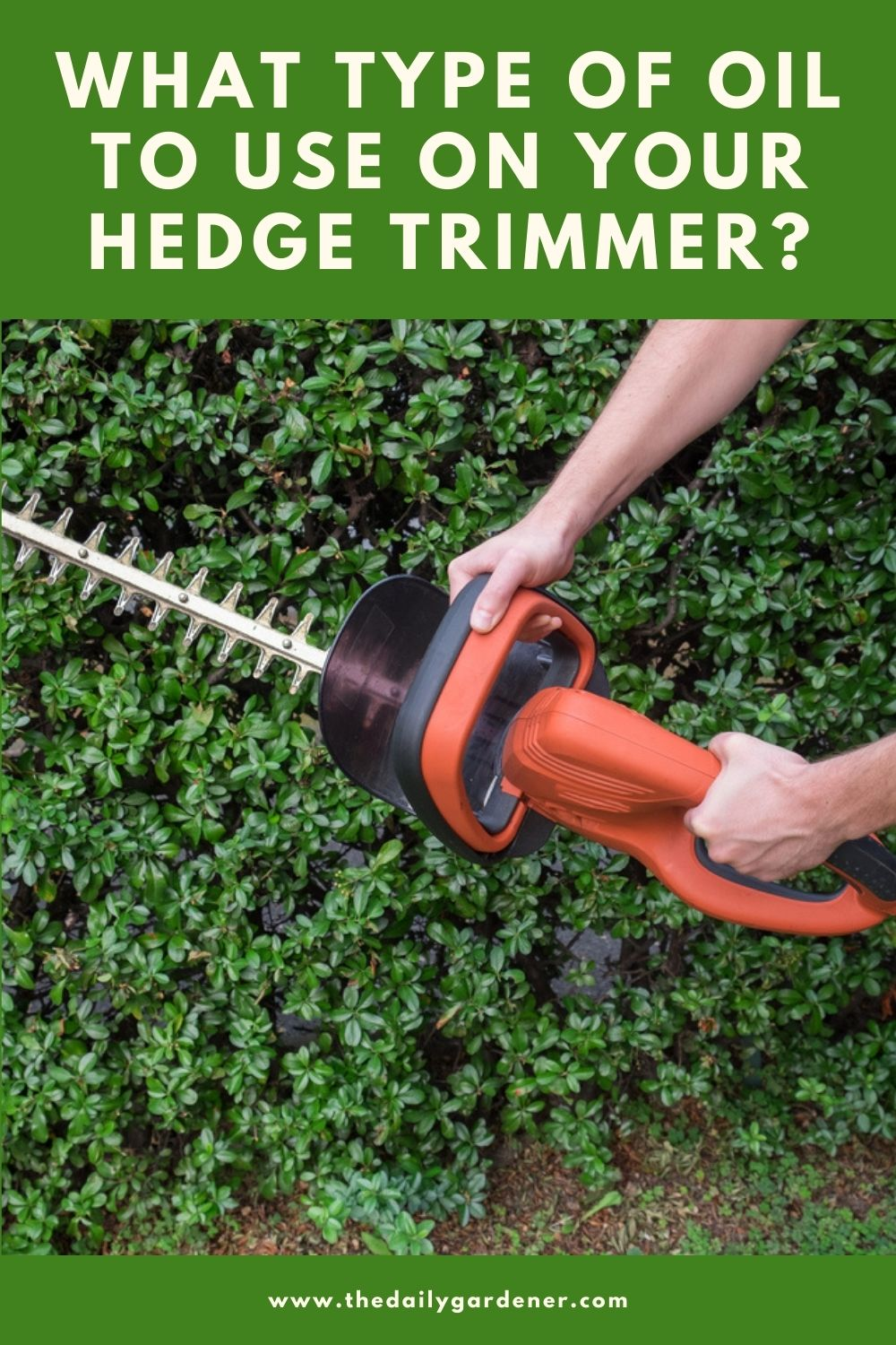 What Type of Oil to Use on Your Hedge Trimmer 2