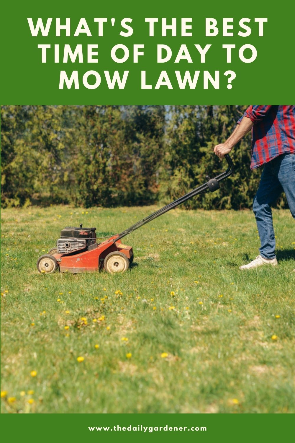 What's the Best Time of Day to Mow Lawn 1