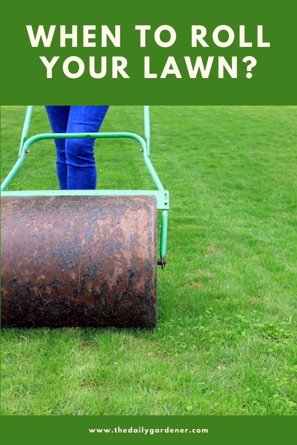 When to Roll Your Lawn 2